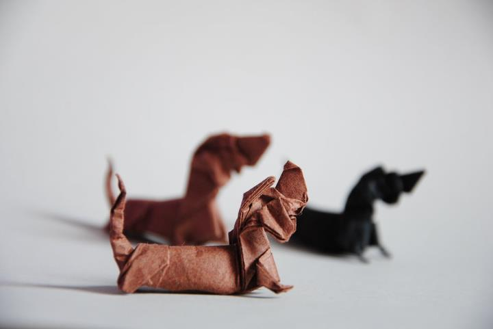 Origami Dogs: Basset Hound Designed by Quentin Trollip