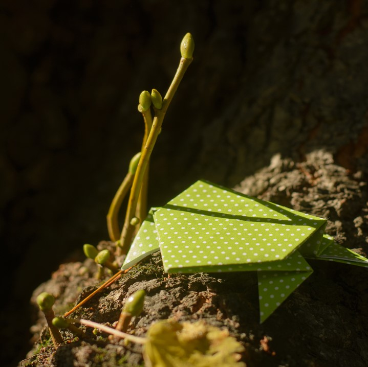 Easy Action Origami Frog that JUMPS - Easy Paper Toys Crafts - How ... | 718x719