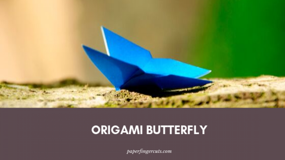 Origami Butterfly (1)