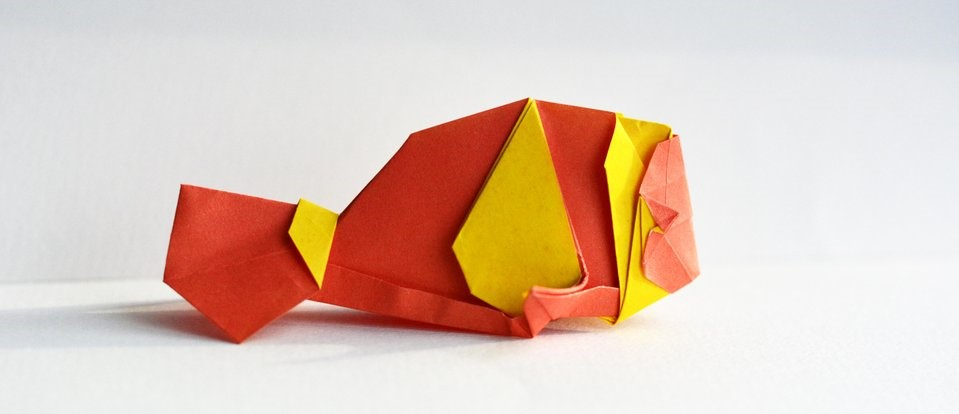 Orange Clownfish Designed by Katrin Shumakov